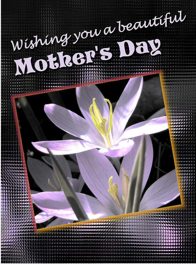 Greeting Card Digital Art - Mothers Day Wish by Susan Kinney