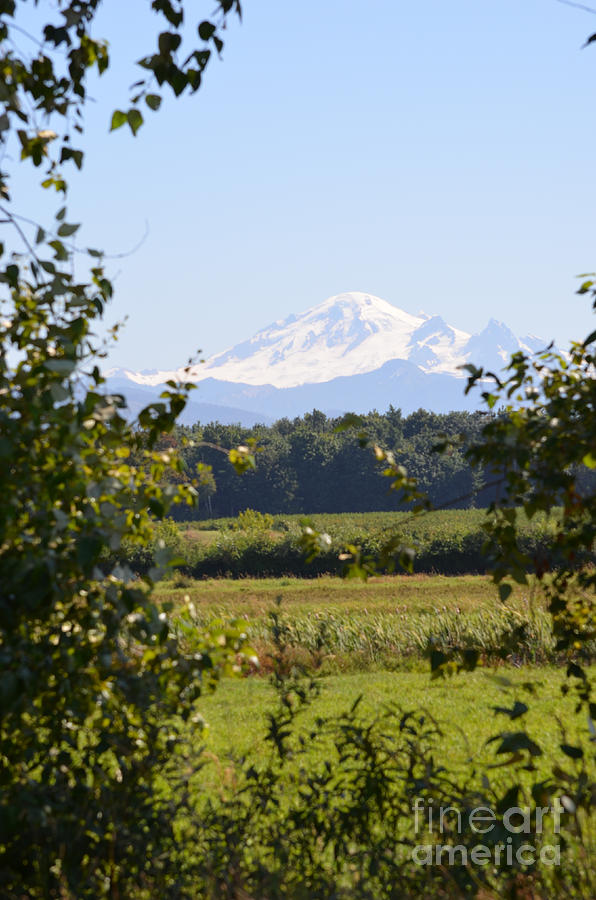 Mount Baker Photograph - Mount Baker 2 by James E Weaver