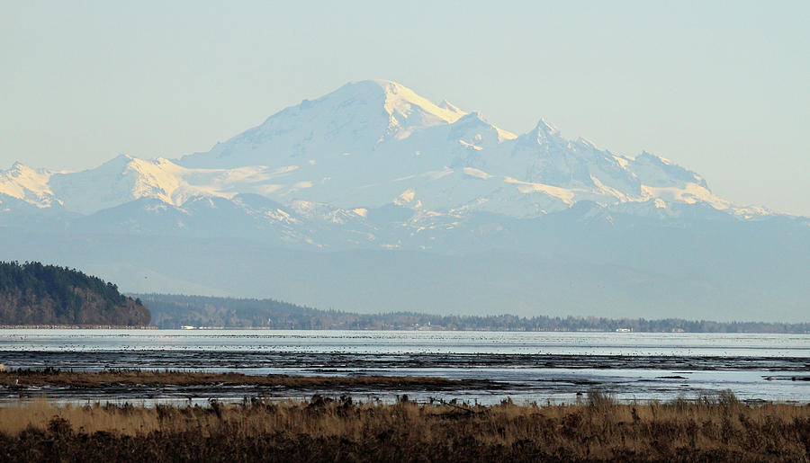 Mount Photograph - Mount Baker From Boundary Bay by Pierre Leclerc Photography