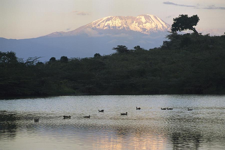Africa Photograph - Mount Kilimanjaro Rises Above One by Richard Nowitz