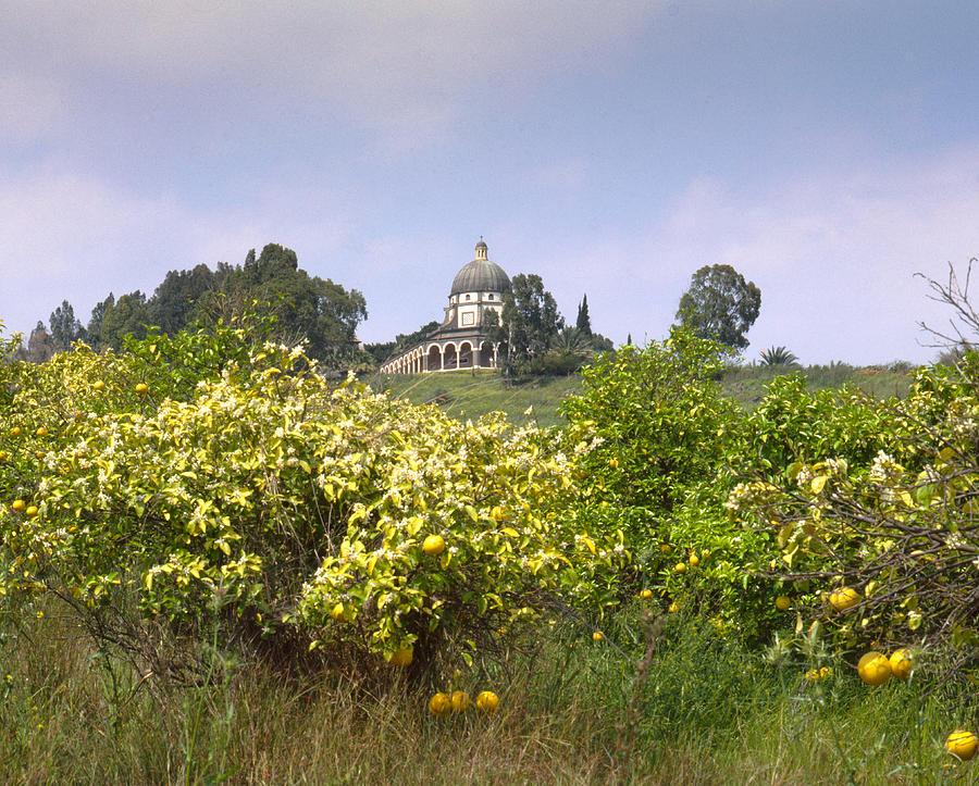 Beatitudes Photograph - Mount Of Beatitudes by Daniel Blatt