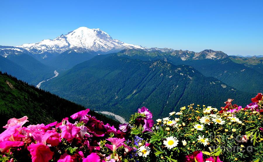 Rainier Photograph - Mount Rainier Seen From Crystal Mountain Summit by Tanya  Searcy