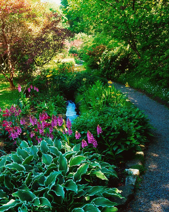 Day Photograph - Mount Usher Gardens, Co Wicklow by The Irish Image Collection