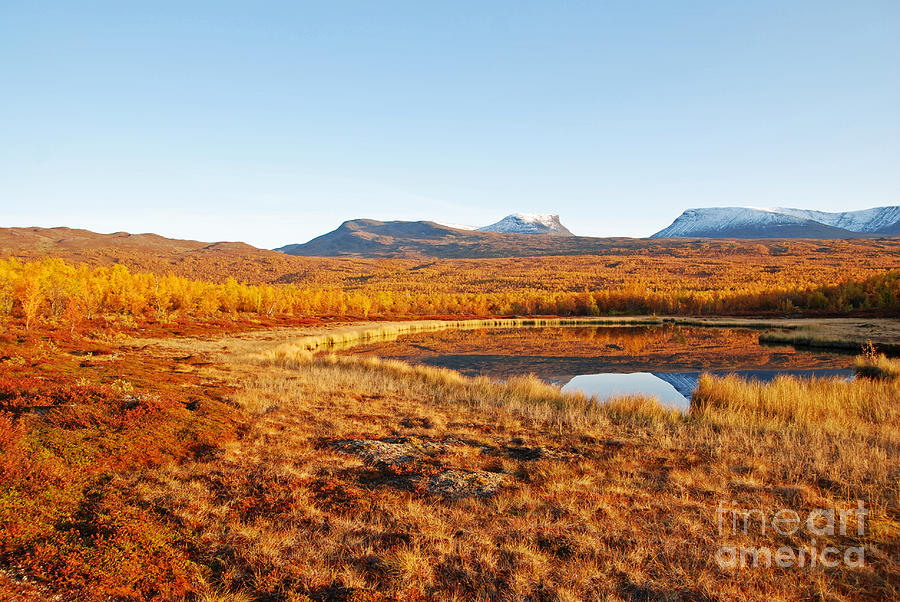 Abisko Pyrography - Mountain In Autumn by Conny Sjostrom