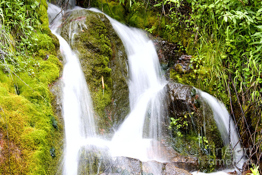 Water Photograph - Mountain Spring 3 by Janie Johnson