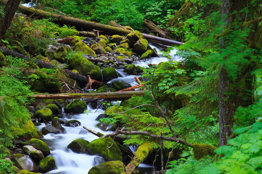 Mountain Springs Photograph By Kai Yoshisato