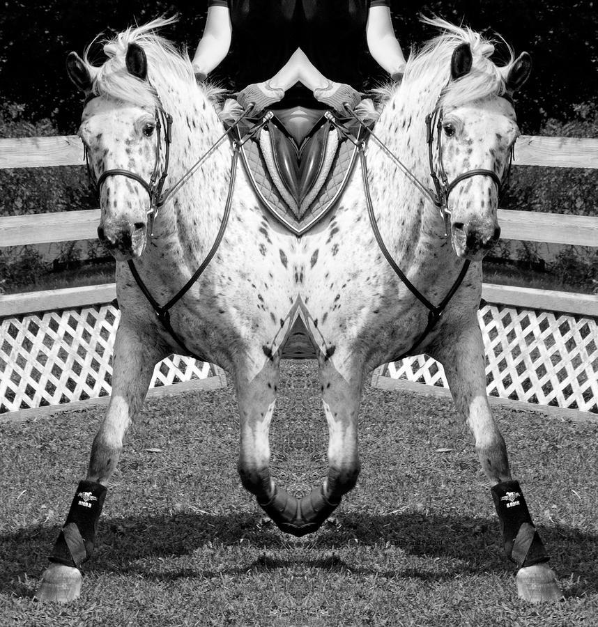 Equine Digital Art - Moving Forward by Betsy Knapp