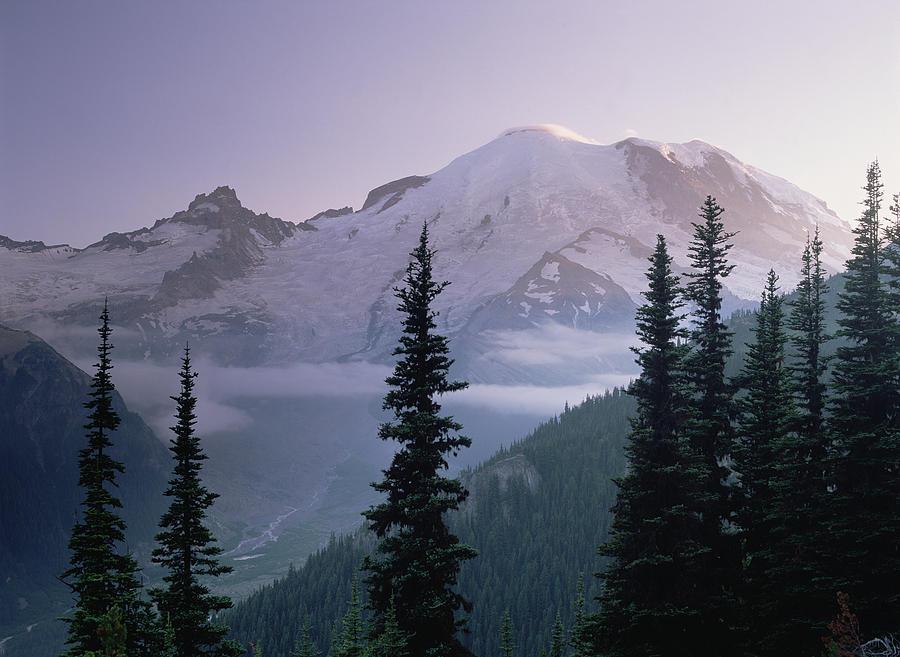 Brook Photograph - Mt Rainier As Seen At Sunrise Mt by Tim Fitzharris