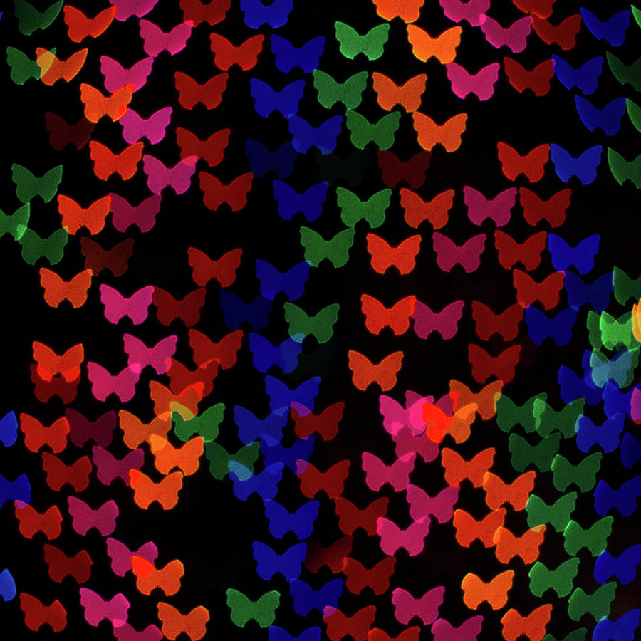 Square Photograph - Multi Colored Butterfly Shaped Lights by Lotus Carroll