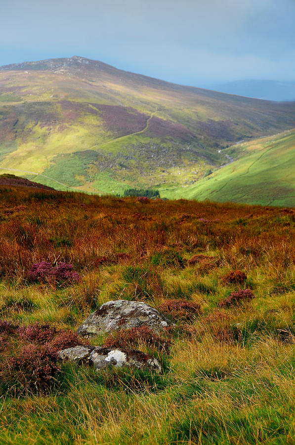 Ireland Photograph - Multicolored Hills Of Wicklow. Ireland by Jenny Rainbow