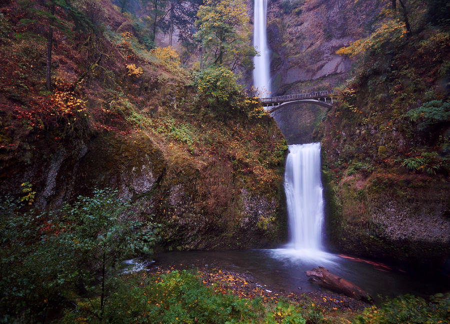 Multnomah Falls by Matt Hanson