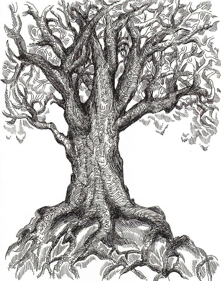 картинки как рисовать дуб арена, замученные звери