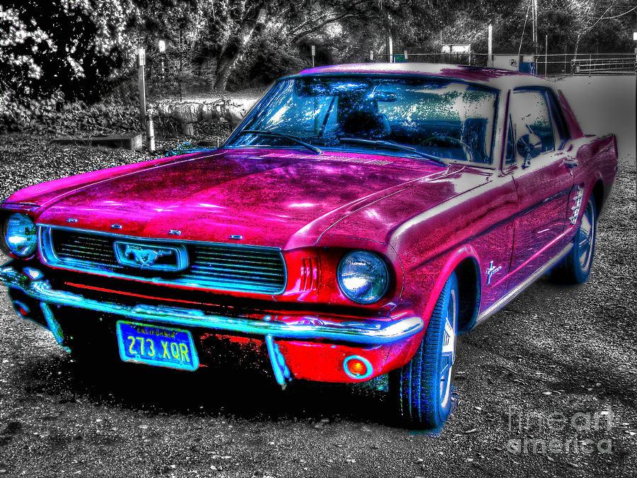 Mustang Photograph - Mustang Sc by Morgan Wright