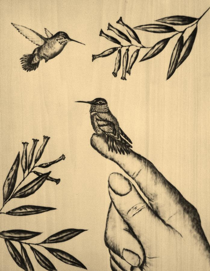 Hummingbird Pyrography - My Babies by Susan Rice