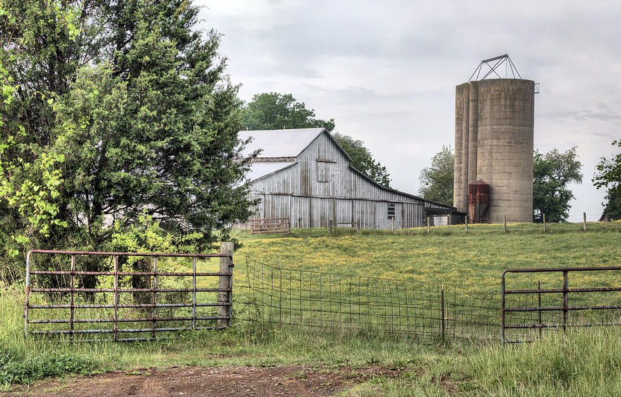 Farm Photograph - My Kind Of Gated Community  by JC Findley