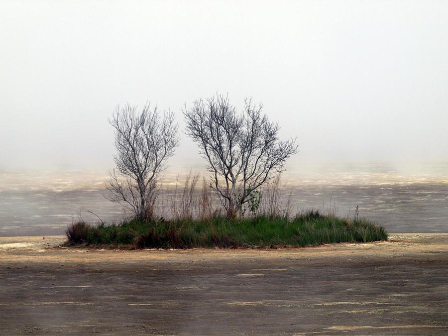 Fog Photograph - Mystery Island by Kim Schmidt