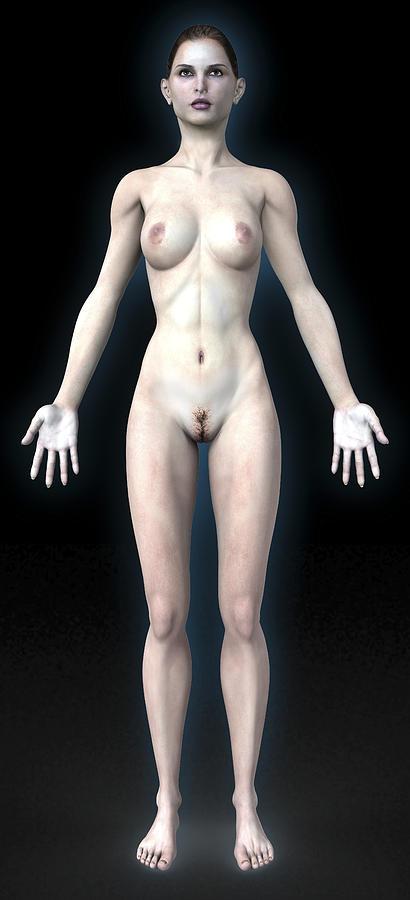 Human Photograph - Naked Woman by Christian Darkin