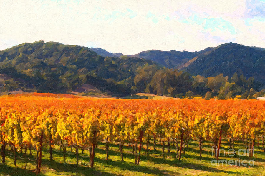 Landscape Photograph - Napa Valley Vineyard In Autumn Colors by Wingsdomain Art and Photography