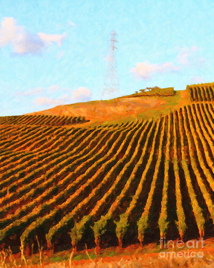 Landscape Photograph - Napa Valley Vineyard . Portrait Cut by Wingsdomain Art and Photography