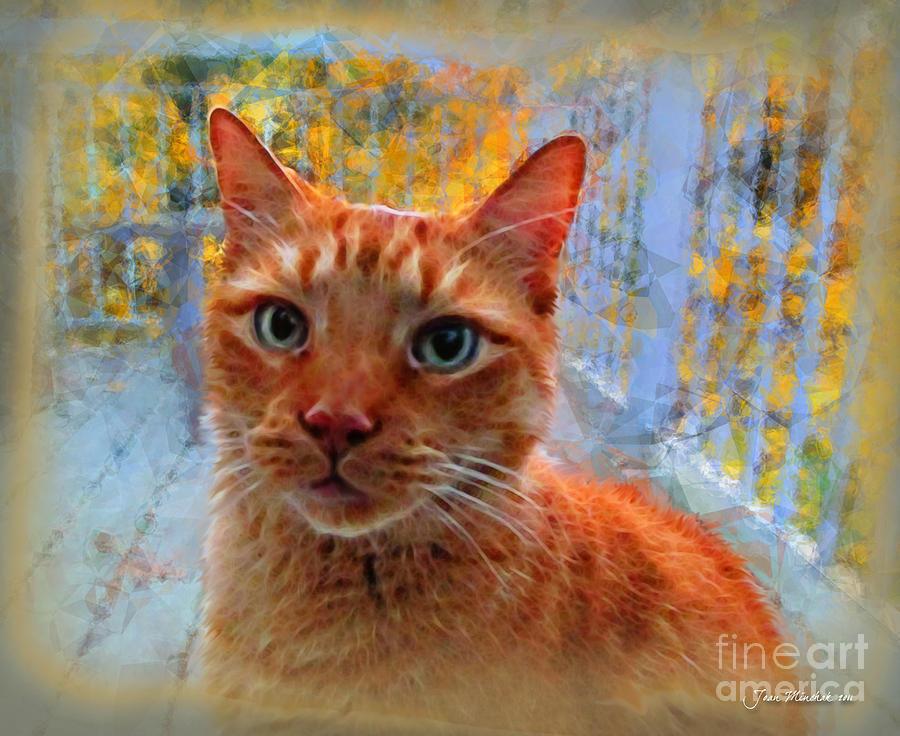 Cat Photograph - Napoleon And Autumn by Joan  Minchak