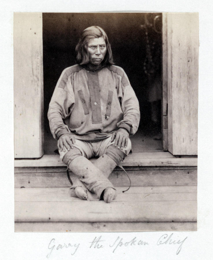 1860s Photograph - Native American Indian Chief, Garry by Everett