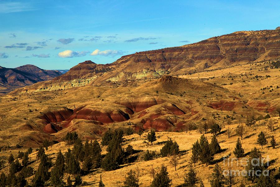 John Day Photograph - Natural Paint by Adam Jewell