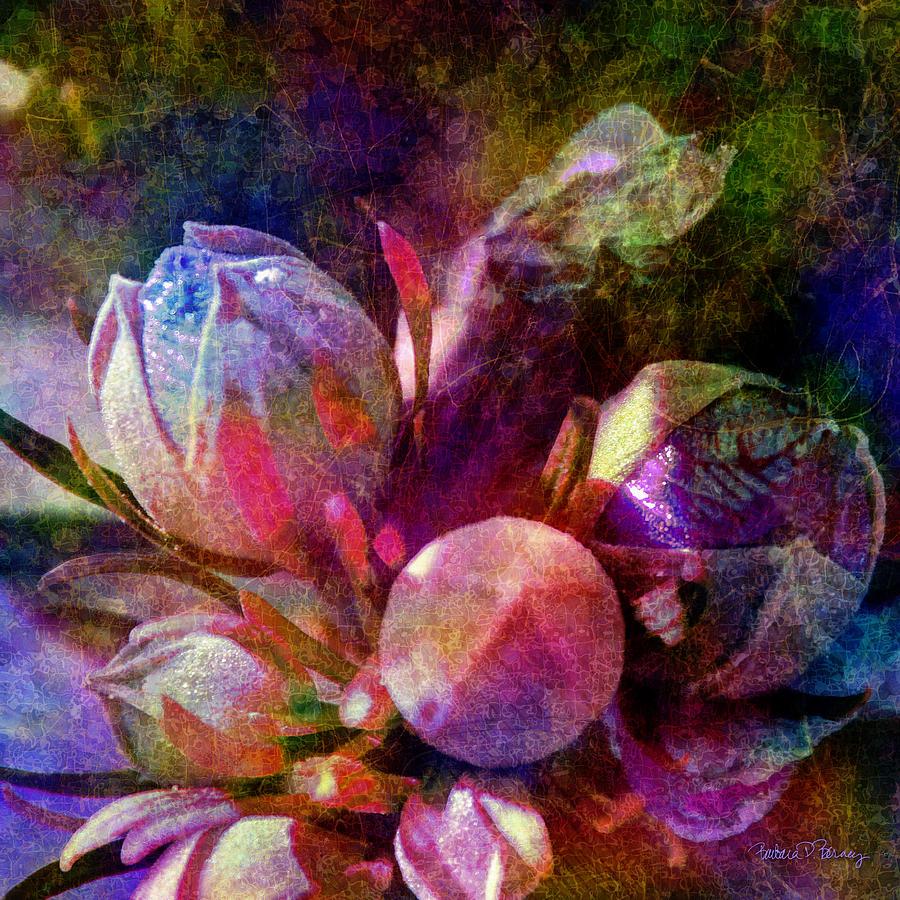 Natural Wonders by Barbara Berney