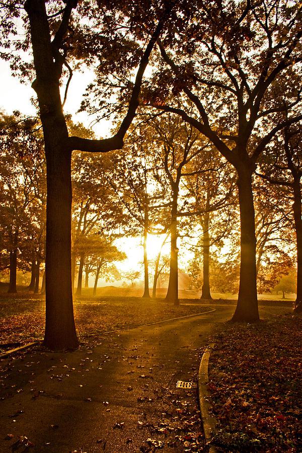 Sunrise Photograph - Natures Alarm Clock by Michael Murphy