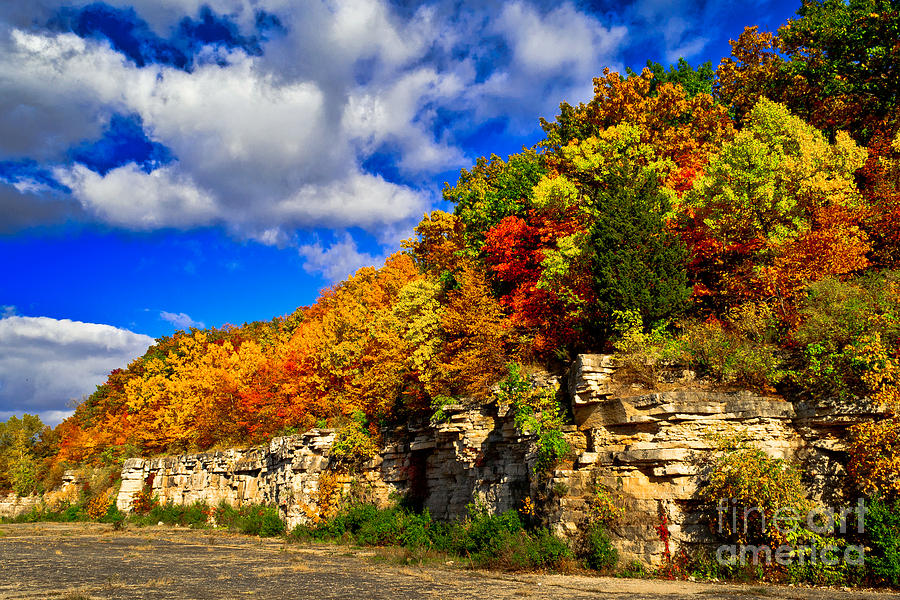 High Cliff Photograph - Natures Arbor Bouquet by Ever-Curious Photography