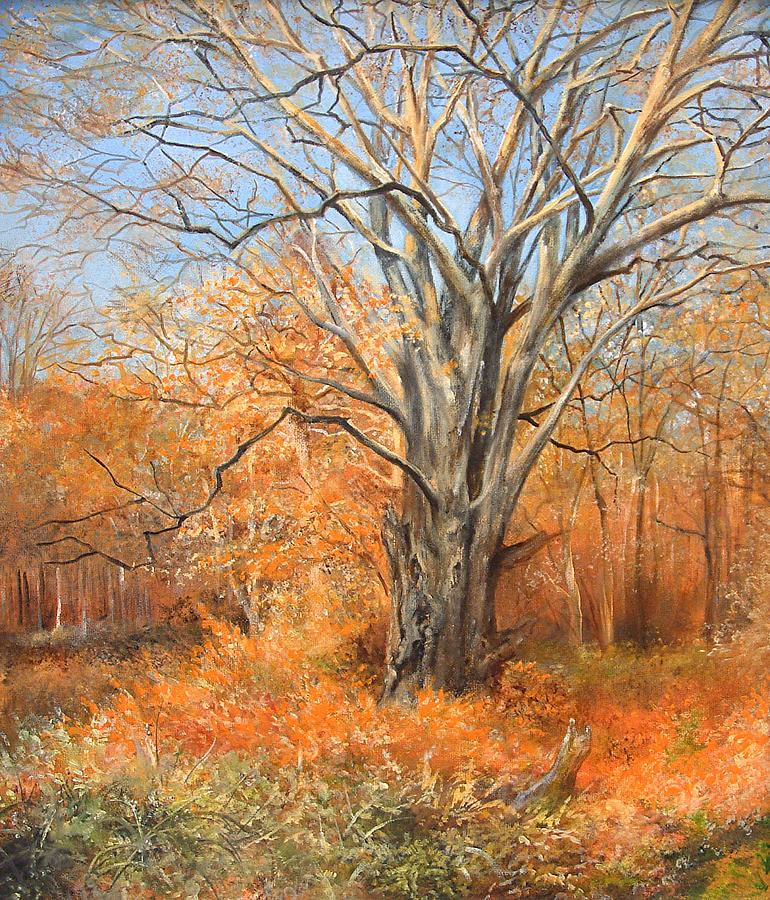 Nature's Canvas by Penny Golledge