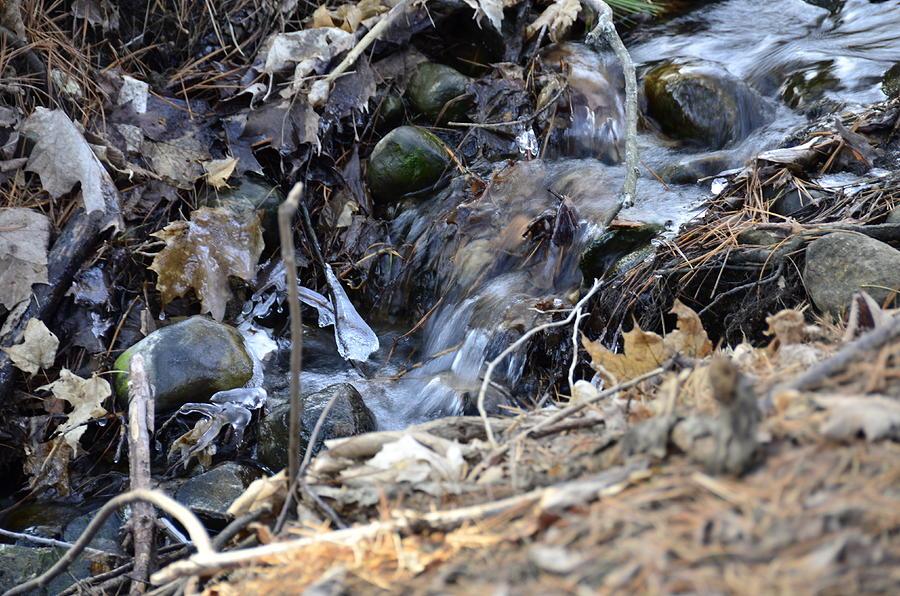 Usa Photograph - Natures Ice Maker by LeeAnn McLaneGoetz McLaneGoetzStudioLLCcom