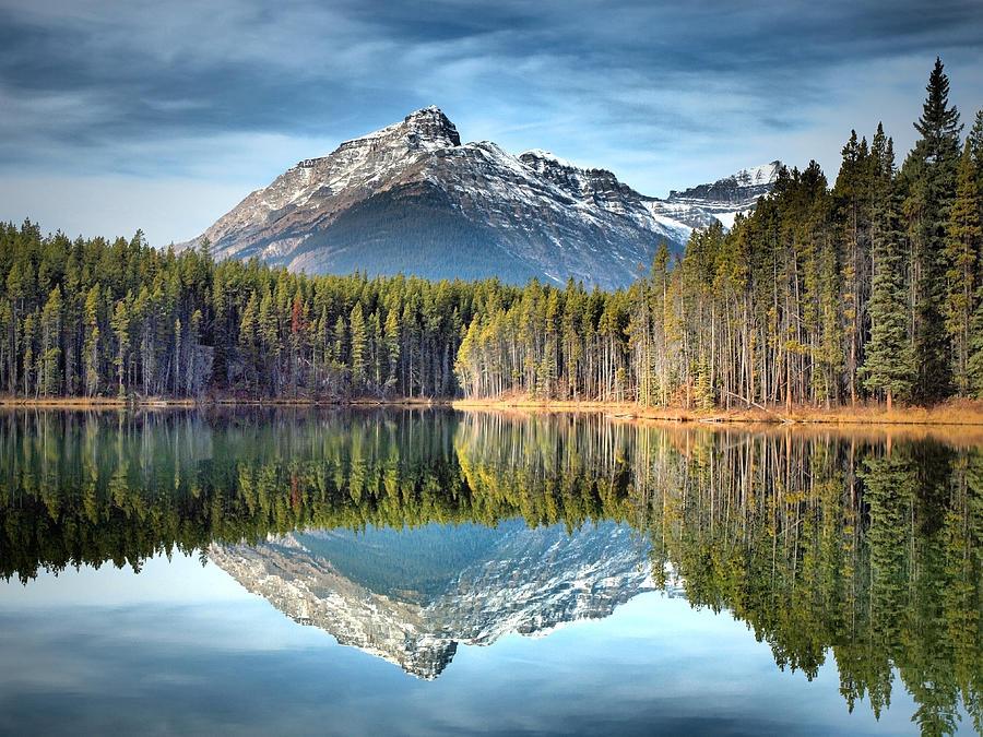 Nature S Reflections Photograph By Tara Turner