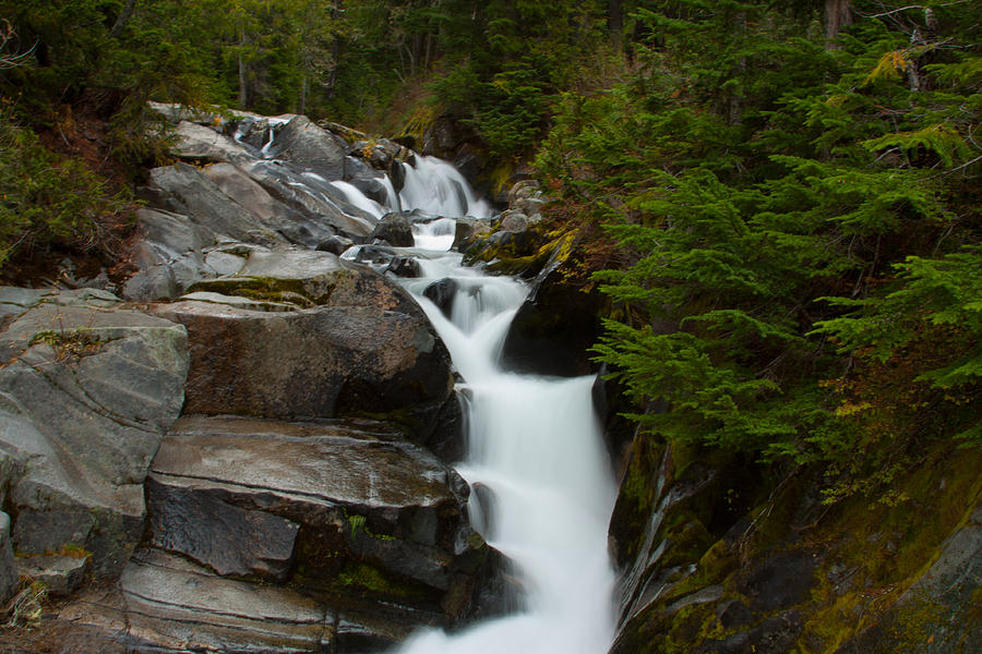 Pacific Northwest Photograph - Natures Steps by Robert  Torkomian