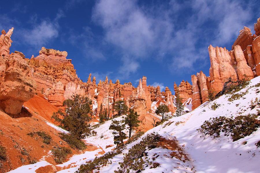 Bryce Photograph - Navajo Trail by Viktor Savchenko