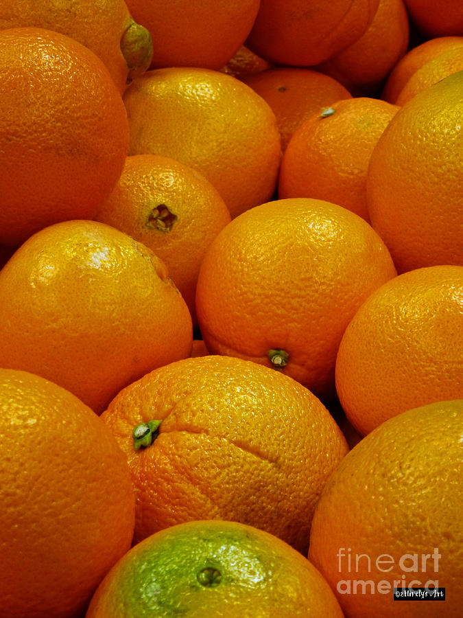 Navel Orange Photograph - Navel Oranges by Methune Hively