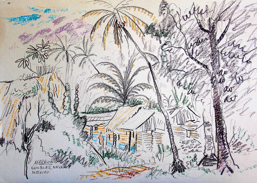 Nayarit Mexican Huts Drawing by Bill Joseph Markowski