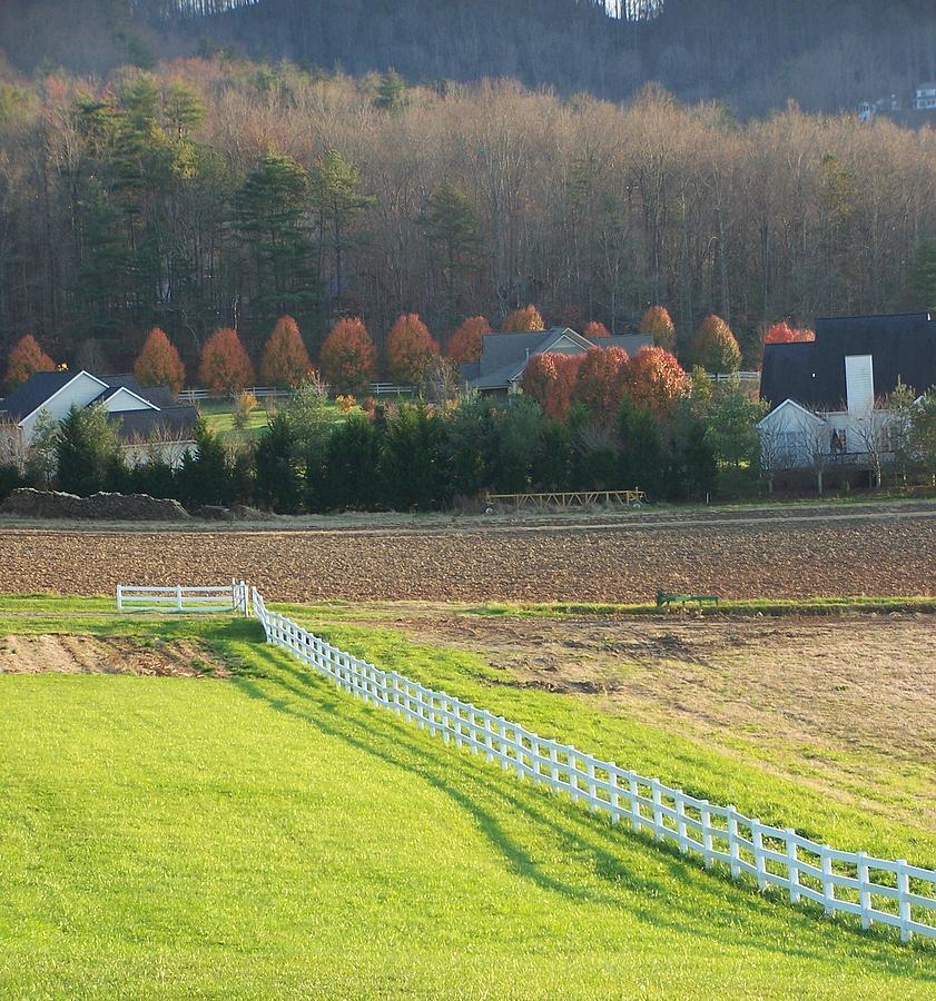 Farm Photograph - Near Lake Lure Nc by Kathy Budd