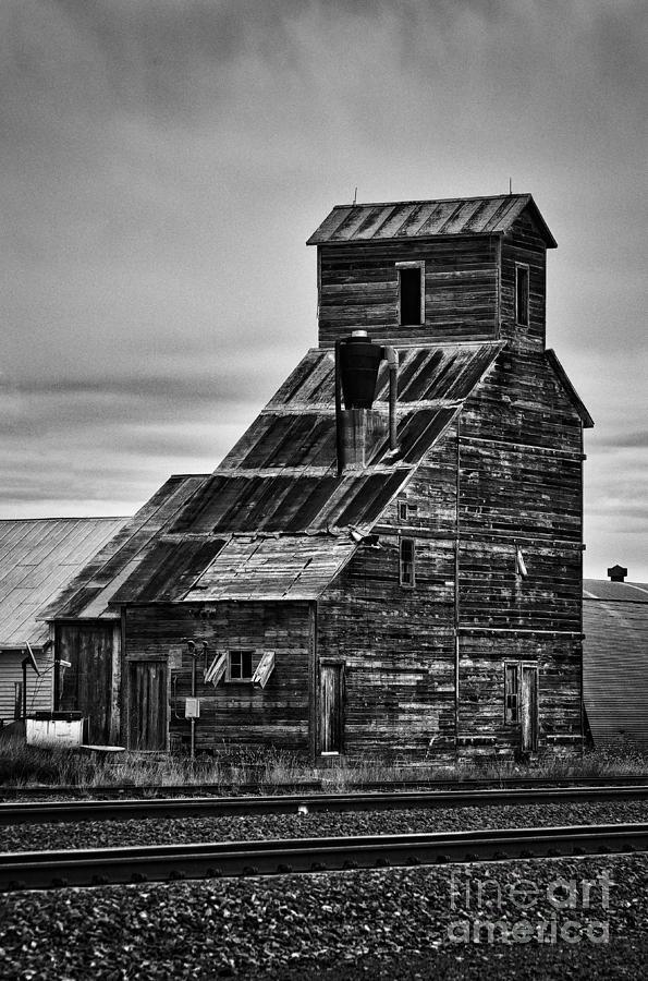 Nebraska Photograph - Nebraska Grain Elevator by David Waldrop