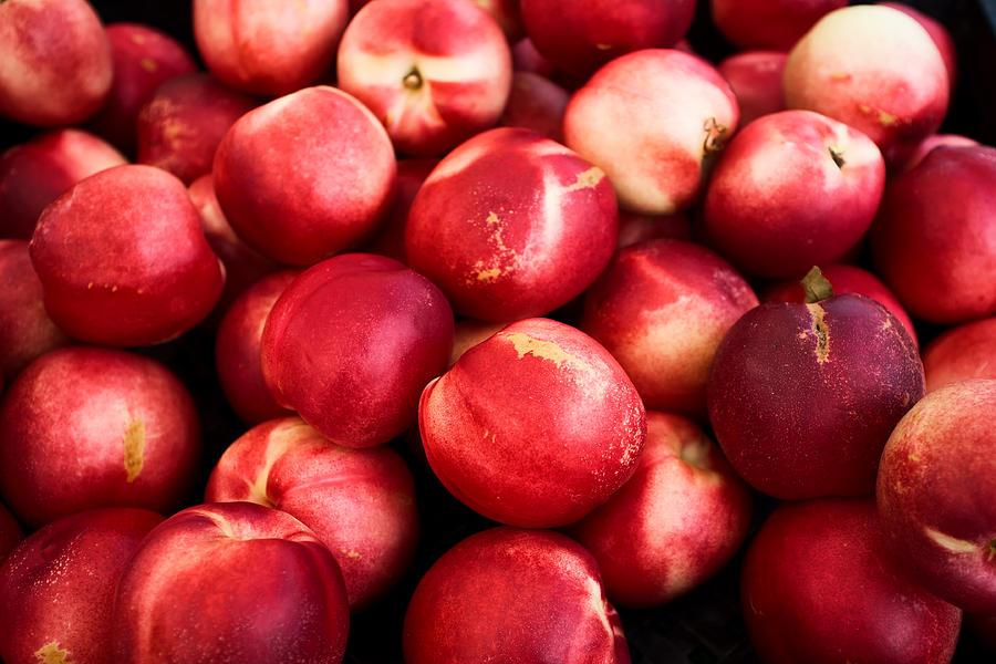 Peaches Photograph - Nectarines by Tanya Harrison