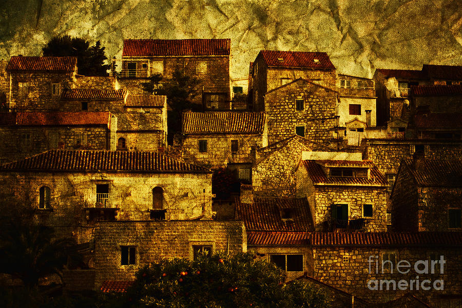 House Photograph - Neighbourhood by Andrew Paranavitana