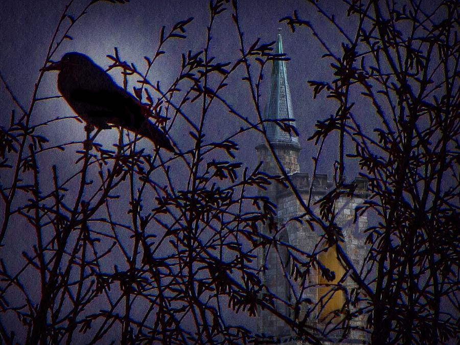 Nevermore Photograph by David Dehner