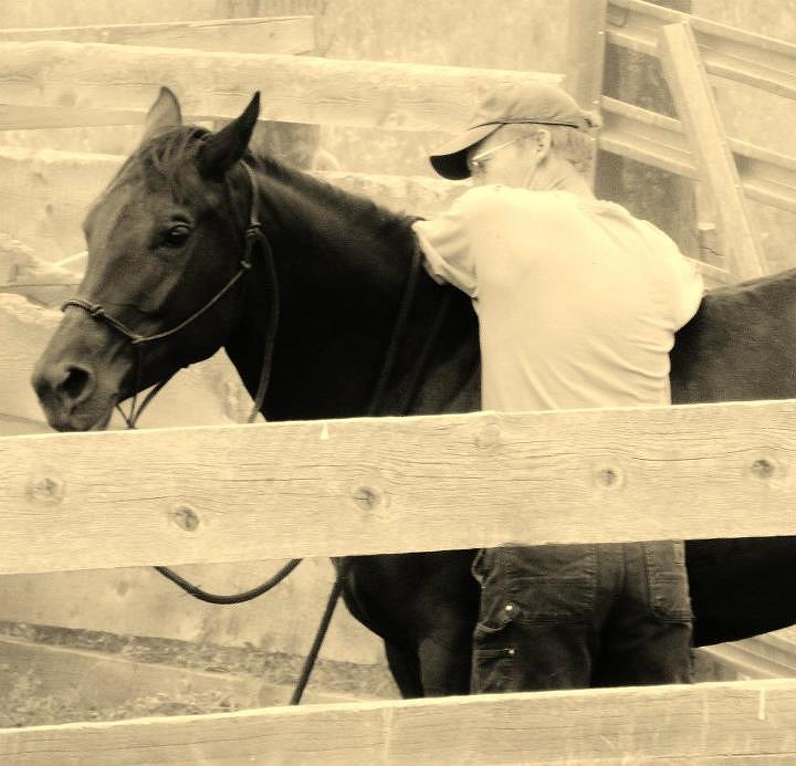 Horse Photograph - New Age Cowboy by Virginia Lei Jimenez