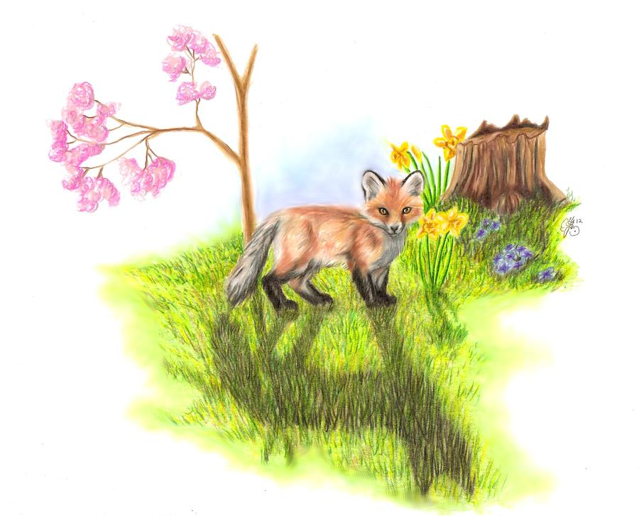 Fox Drawing - New Beginnings by Scarlett Royal