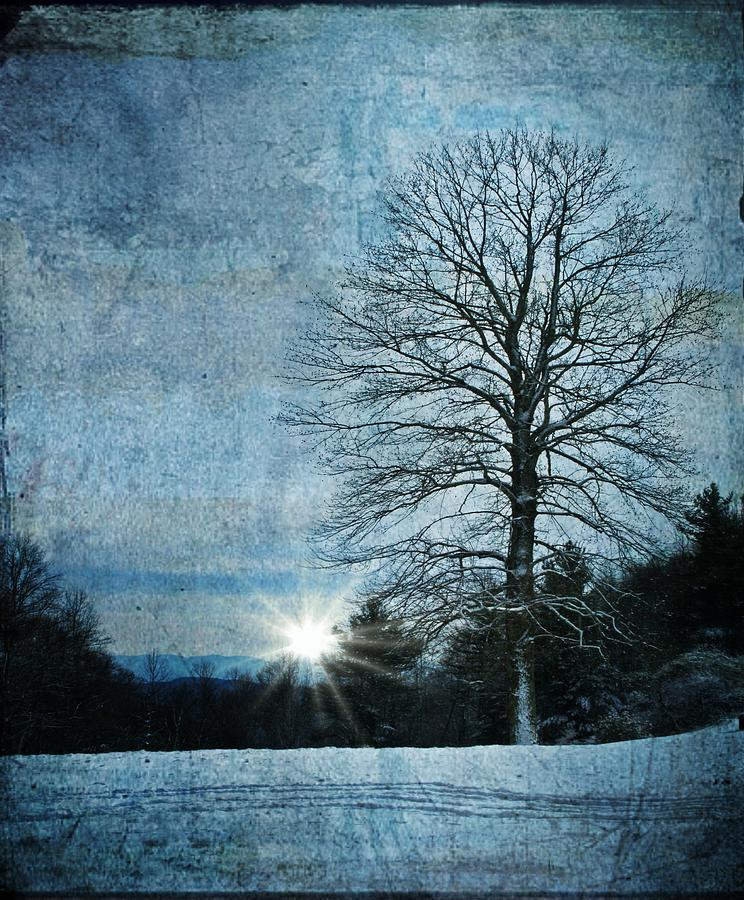 Winter Photograph - New Blue Sunrise by Christine Annas