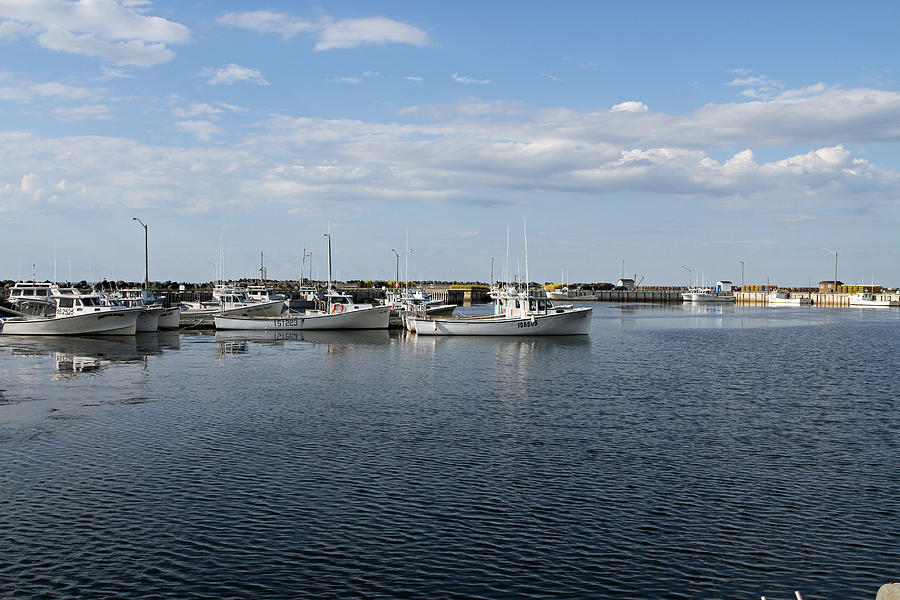 Harbour Photograph - New Brunswick Harbour by Gord Patterson