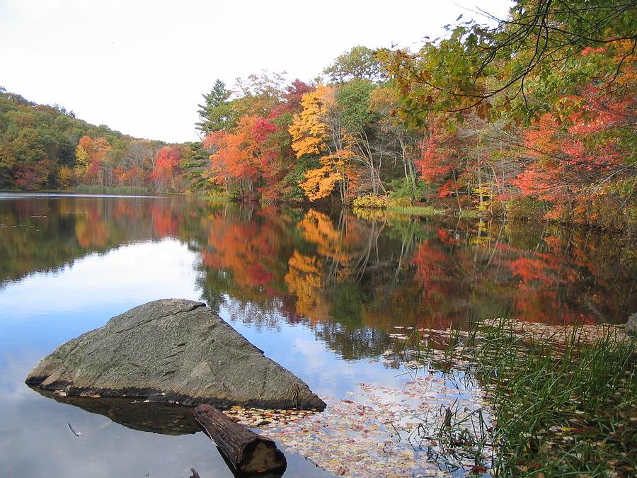 Autumn Photograph - New England Autumn by Jf Halbrooks