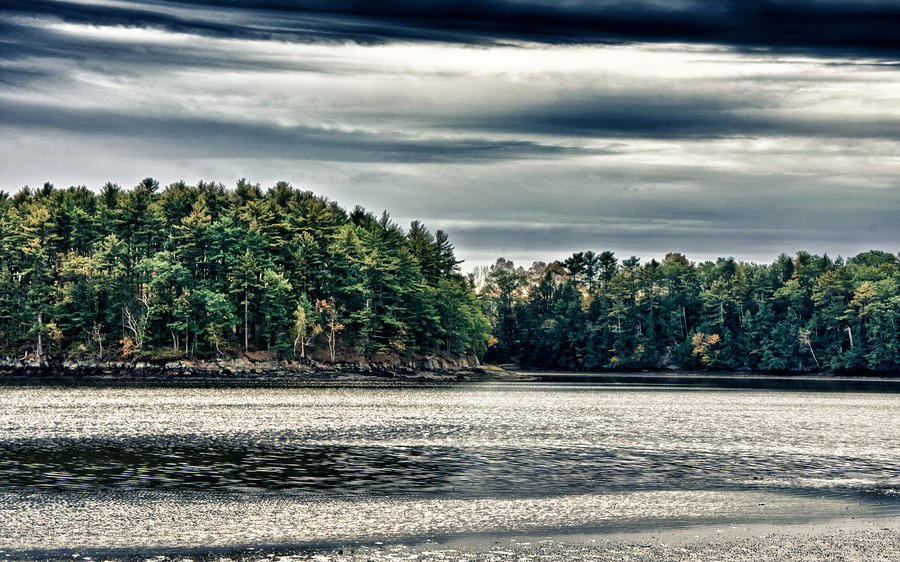 Tree Photograph - New Hampshire Waterway 3 by Edward Myers