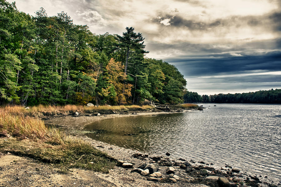 Tree Photograph - New Hampshire Waterway by Edward Myers