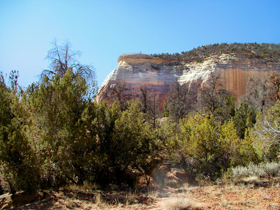 Landscape Photograph - New Mexico Series - Bandelier IIi by Kathleen Grace