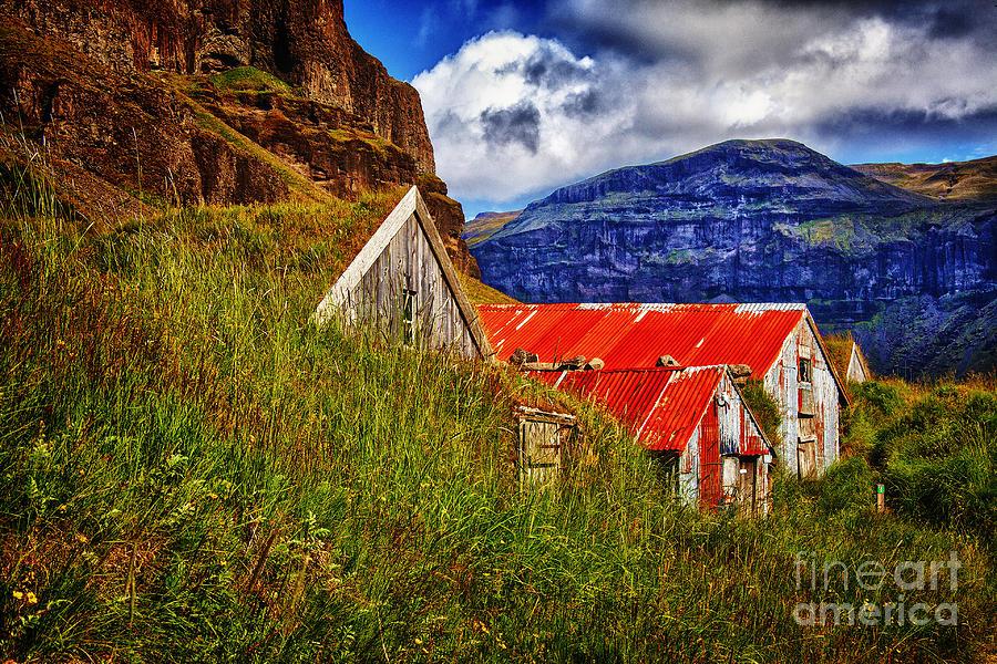 New Turf Farm Look Photograph by Rick Bragan